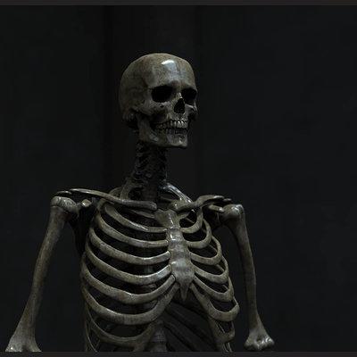 Frank dzidowski remake skeleton v002