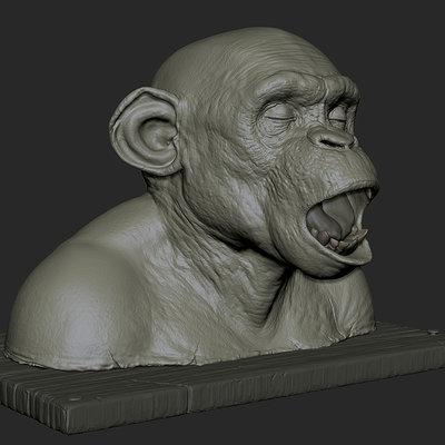 ape autopsy pt2 wip