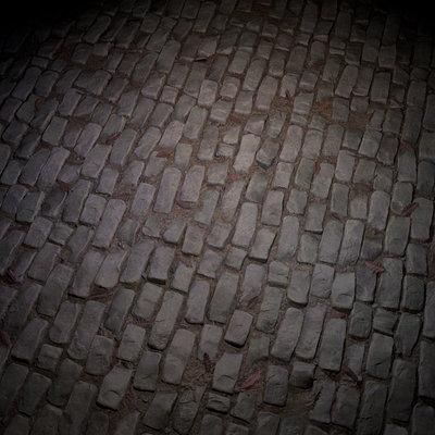 Anthony carmona paved floor 1 flat