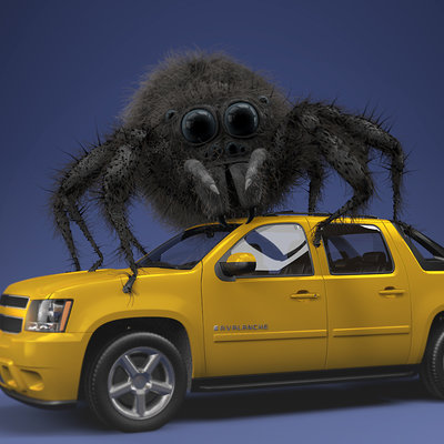 Spider On car