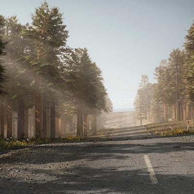 Roman senko road forest