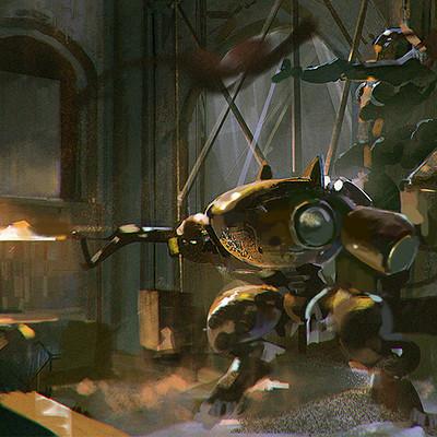 Robin chyo exterminator