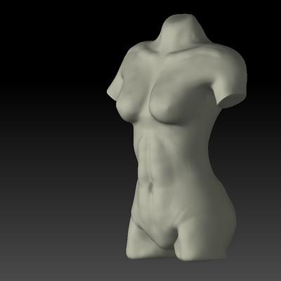 Palo piktor torso