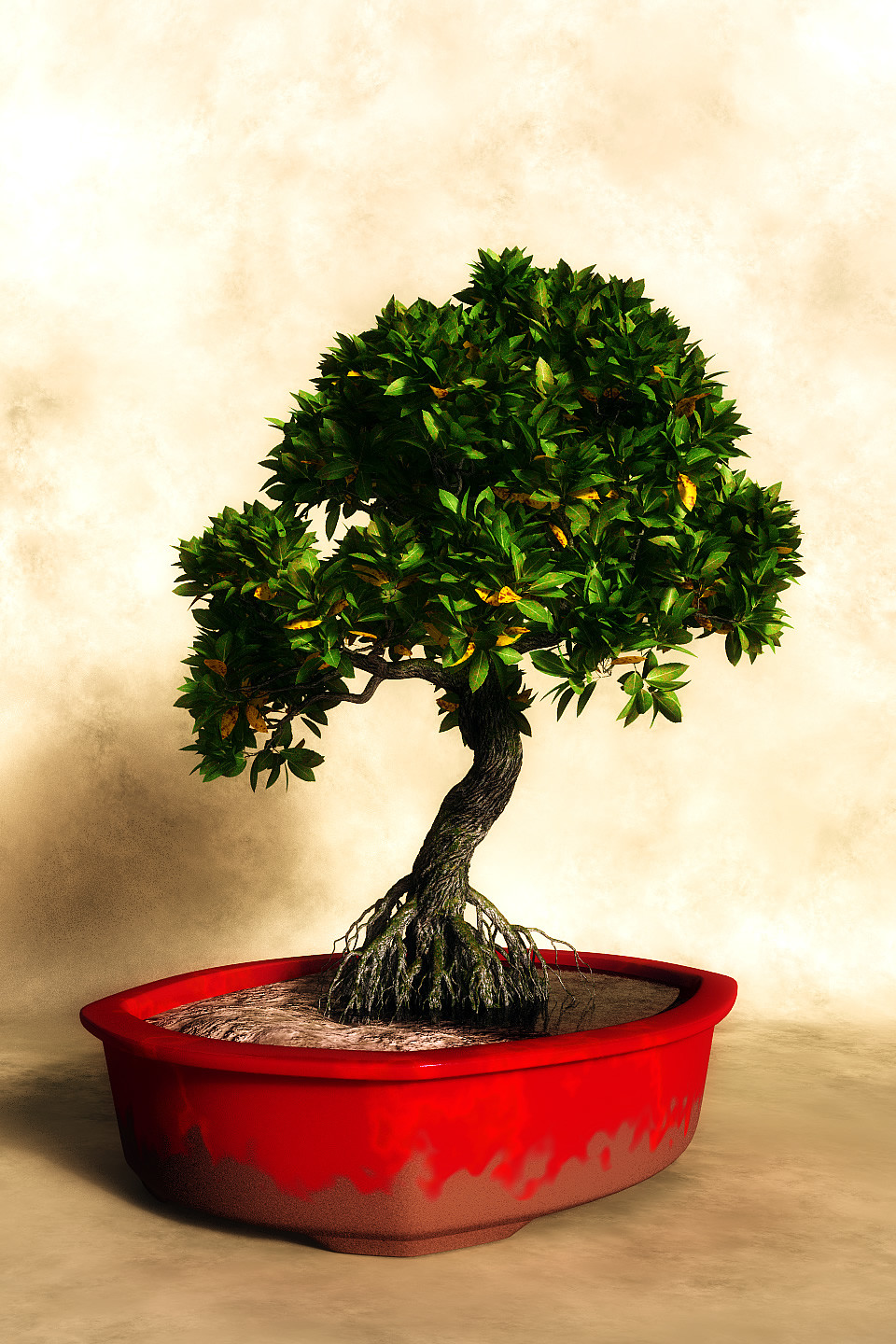 The impossible Rhizophora bonsai tree