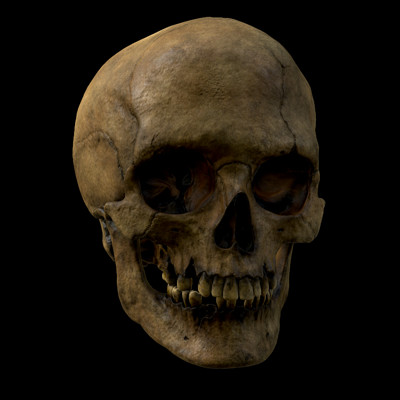 Leandro soares skull2