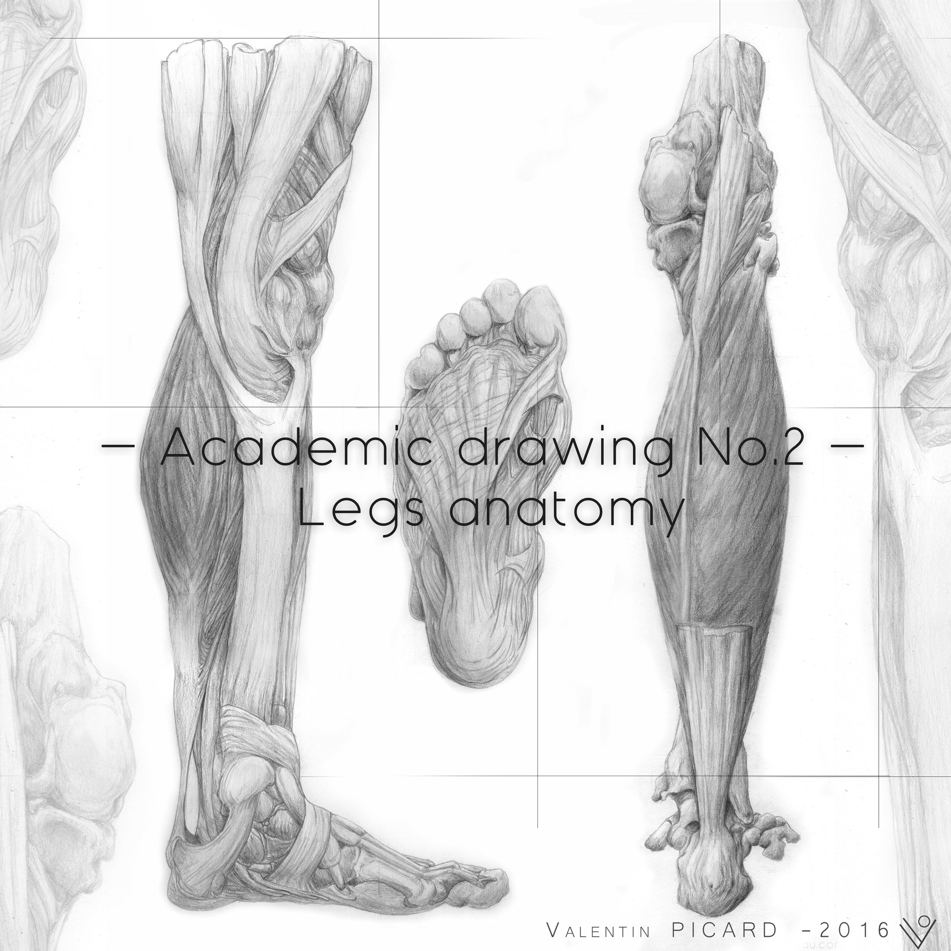 ArtStation - Academic drawing No.2 - Legs anatomy, Valentin PICARD