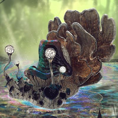 Tudor morris final mushroom