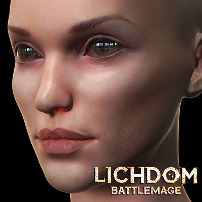 Lichdom Battlemage : player's character