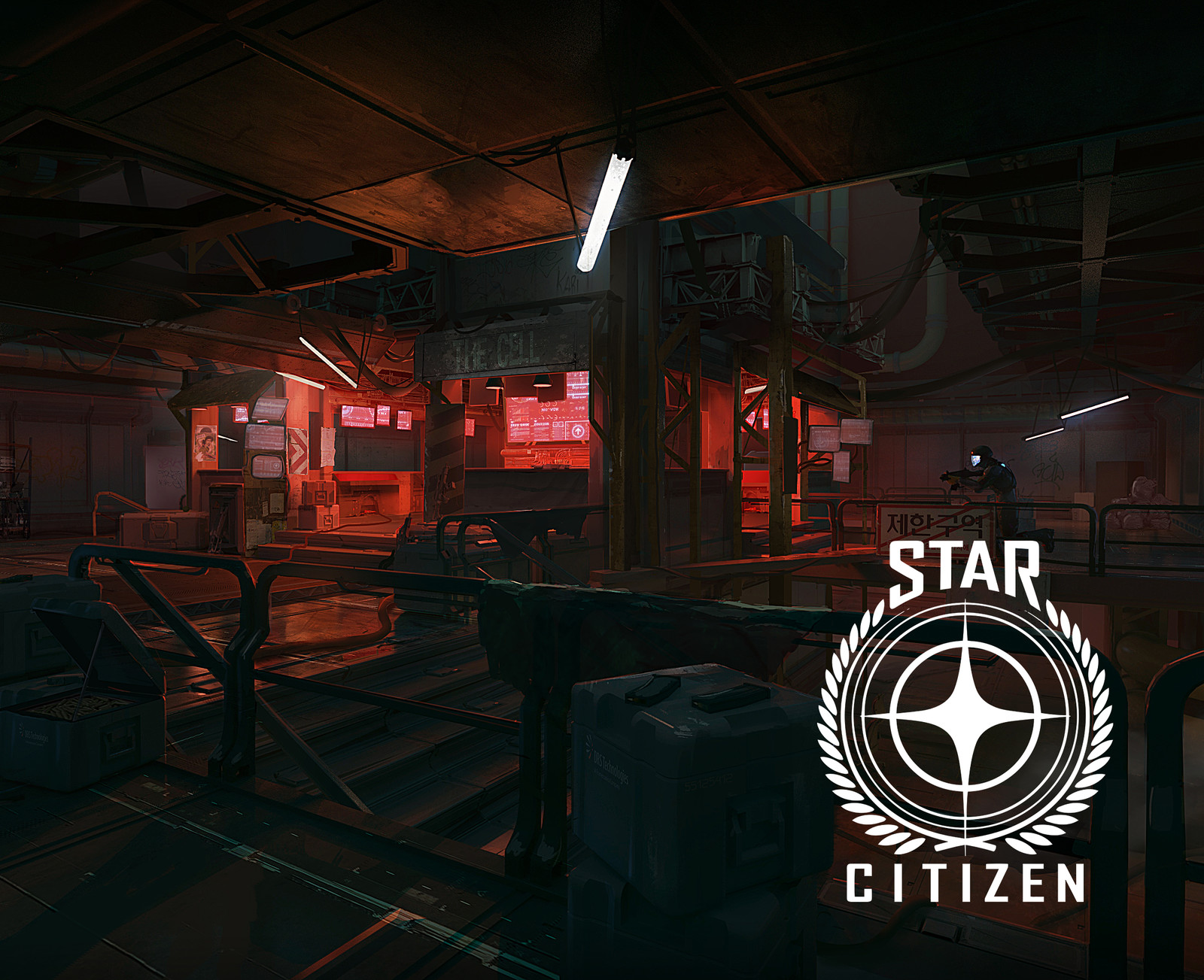 Star Citizen, Star Marine concepts