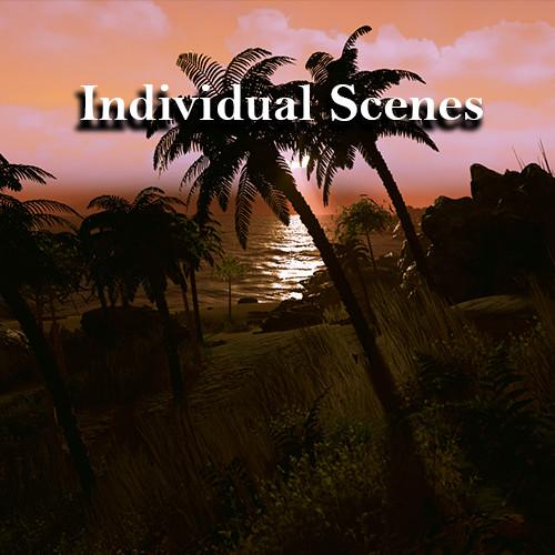 Individual Scenes