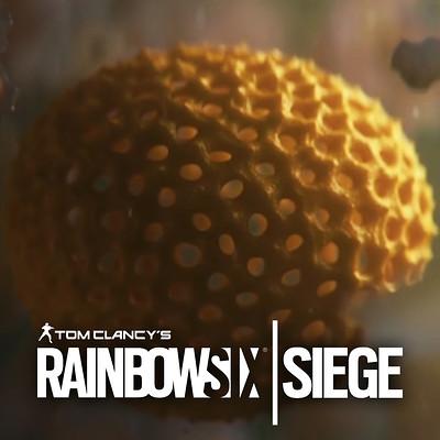 Andrew averkin rainbow six siege logo