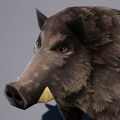 Hauke thiessen boar