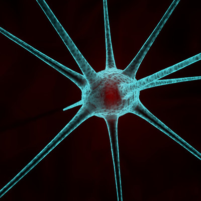 Nill antunes nill antunes nervecell02 light2