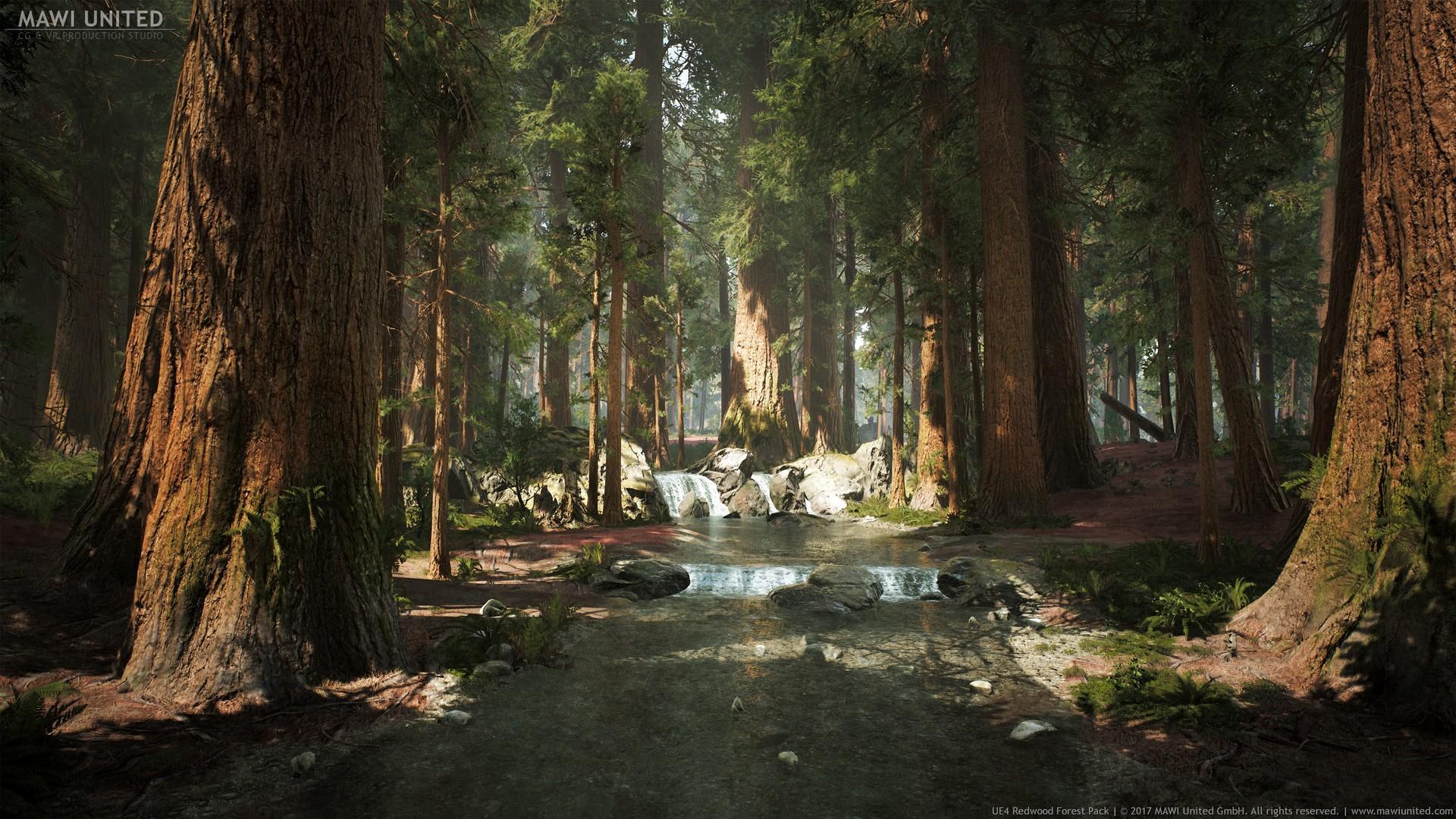 artstation ue4 redwood forest willi hammes