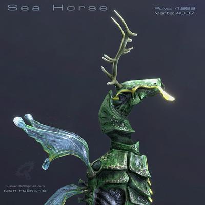 Igor puskaric seahorse insta 1