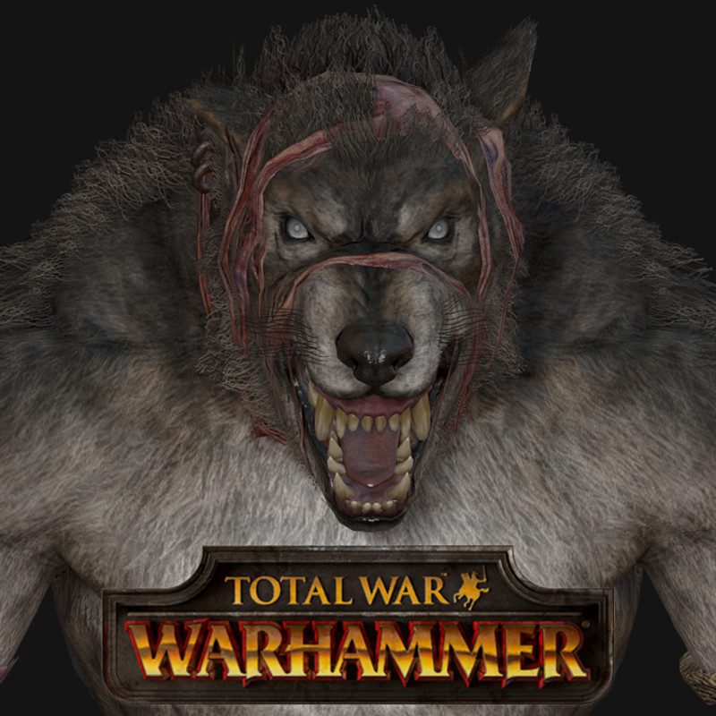 Total War: Warhammer - Skin Wolves