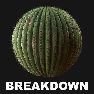 Joakim stigsson seguarocactusbreakdown 01