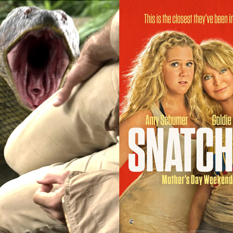Snatched Movie - Anaconda modeling.