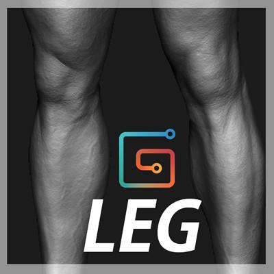 Andrey gritsuk leg icon