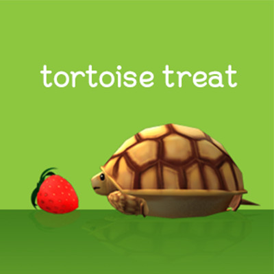 tortoise treat
