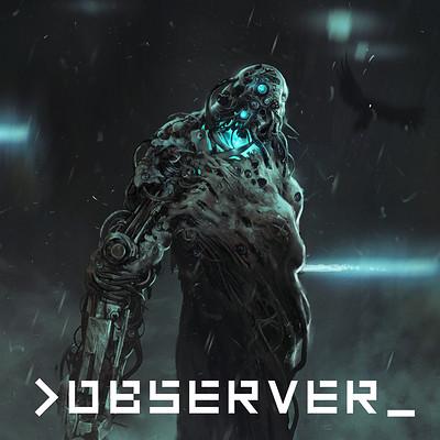Mateusz lenart observer characters lenart strongarm icon