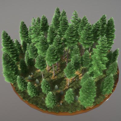Dennis haupt spruce forest 8