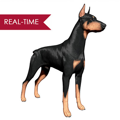 Alex lashko doberman by alexlashko realtime