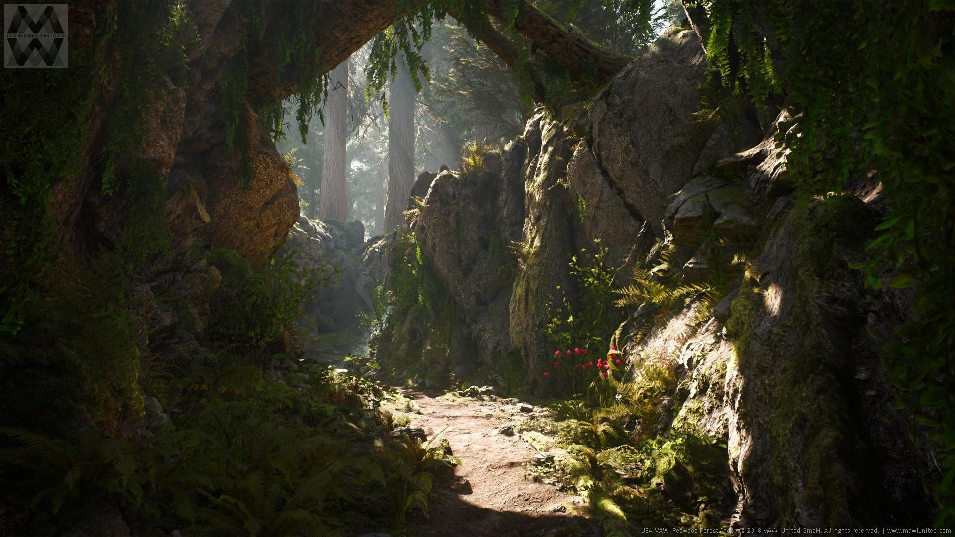 Artstation Ue4 Redwood Forest V2 Update Willi Hammes