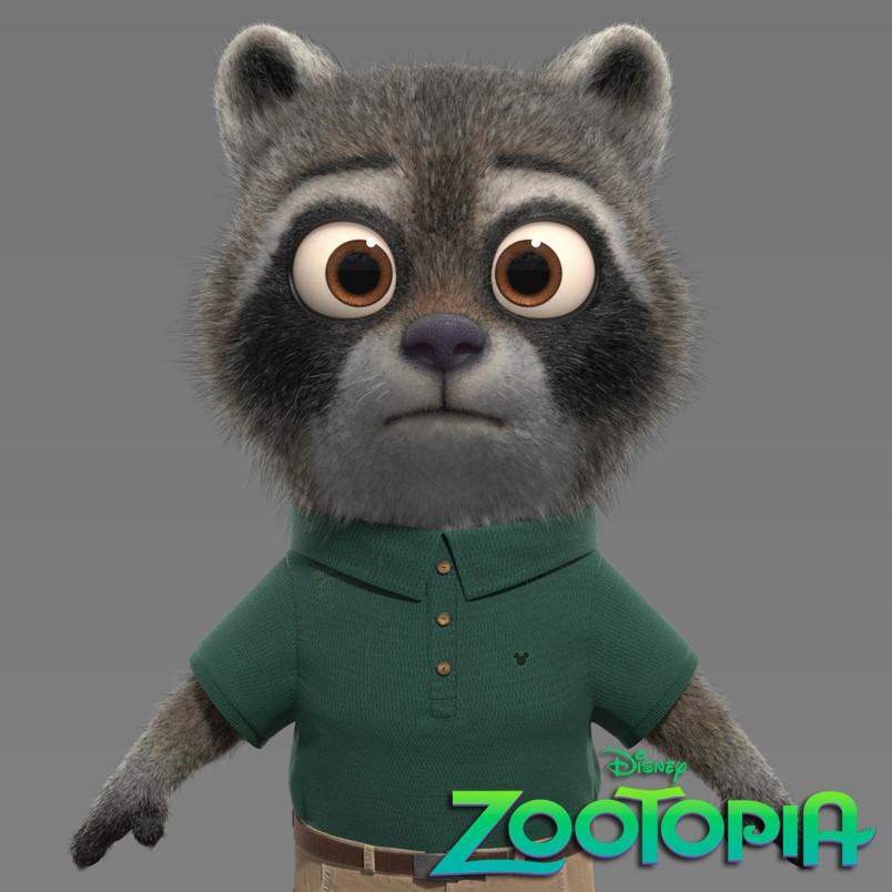 Raccoon Kid