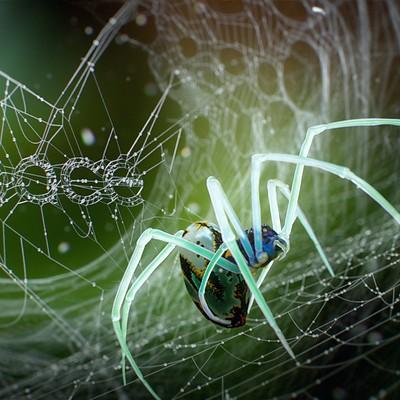 Marcelo souza spaceiron spider 004web