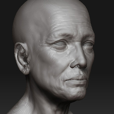 Old Head Sculpts - 2006