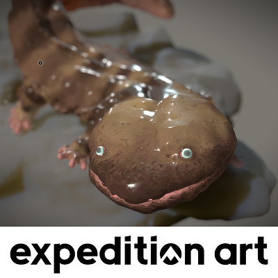 Thierry doizon expeditionart id barontieri salamander thumb