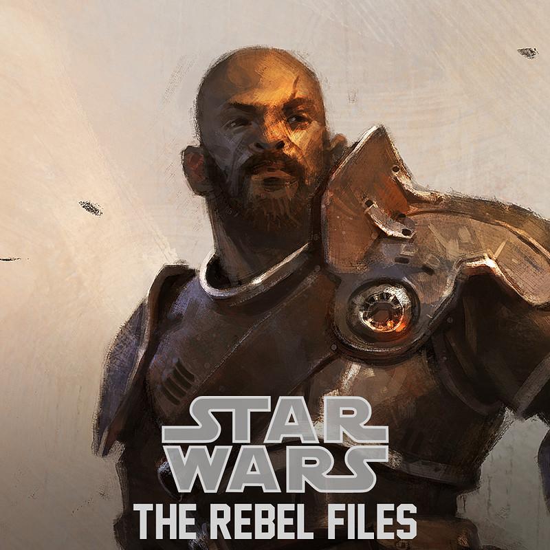 Star Wars: The Rebel Files - illustrations