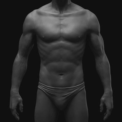 Ilhan yilmaz male anatomy study all 12