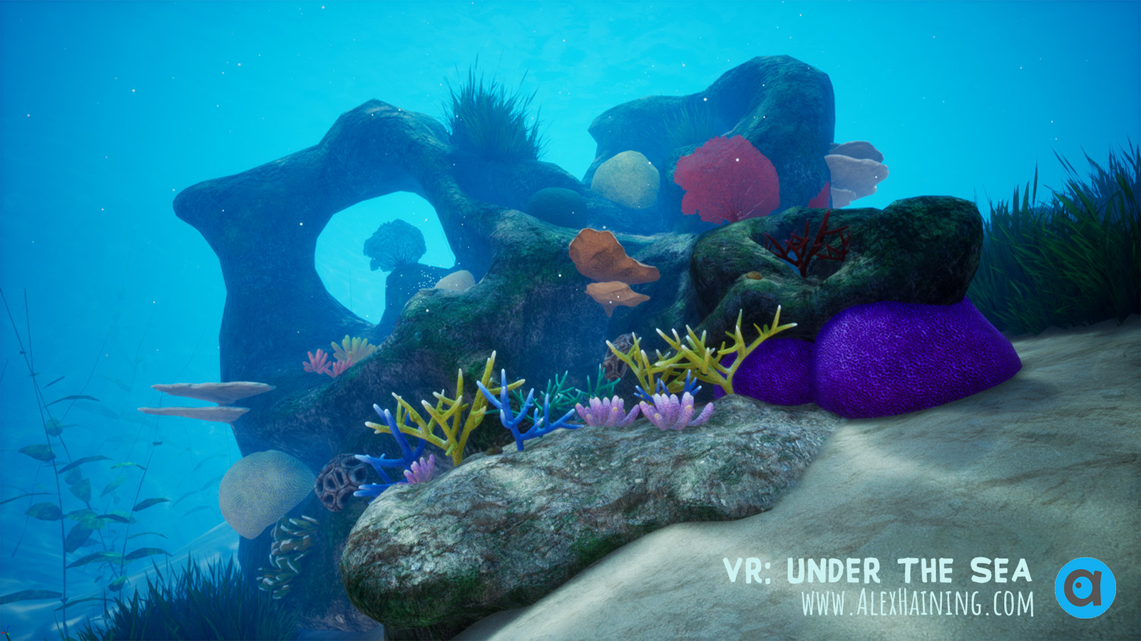 Under the Sea: VR a tool for Conservation