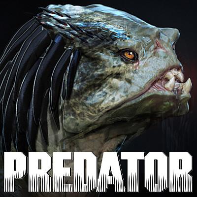 Predator Dog
