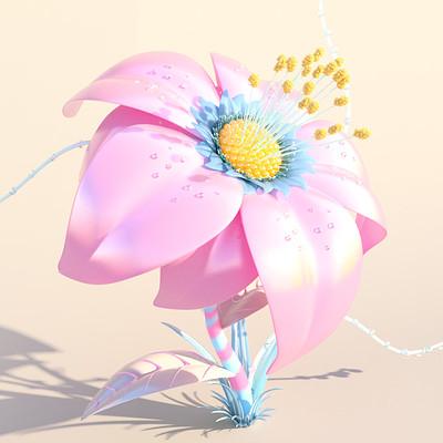 ace5 brand flower