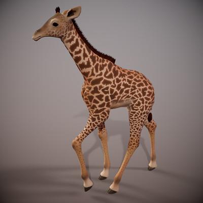 Laura lee cooper lauraleecooper giraffe camerx base