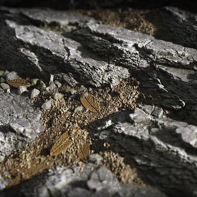 Carla tang layered rock wallpaper 03