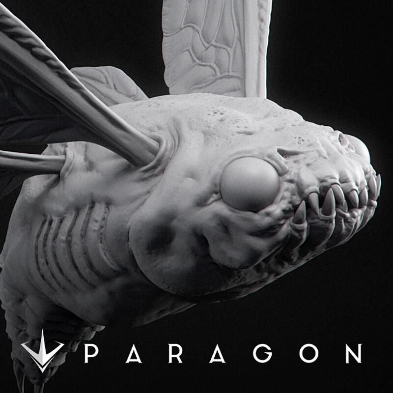 Paragon Bug