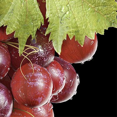 Luis lopes grapes thumb