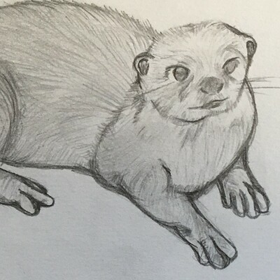 Jessica chell day 1 otter