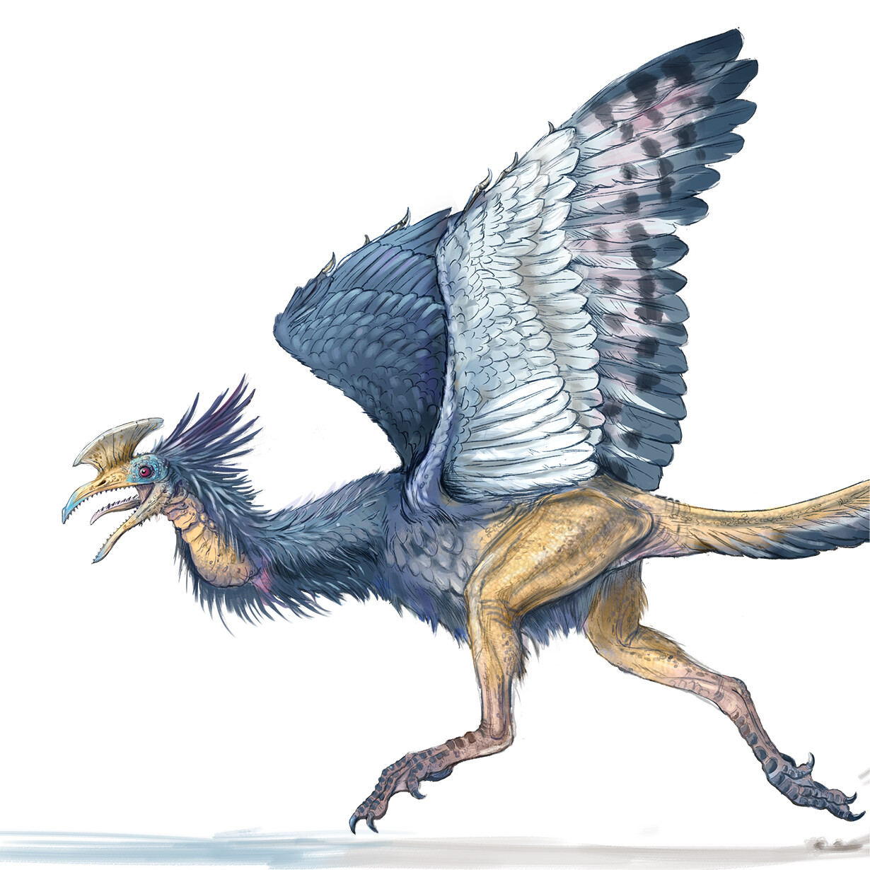 Hackbill (bird and dinosaur hybrid)