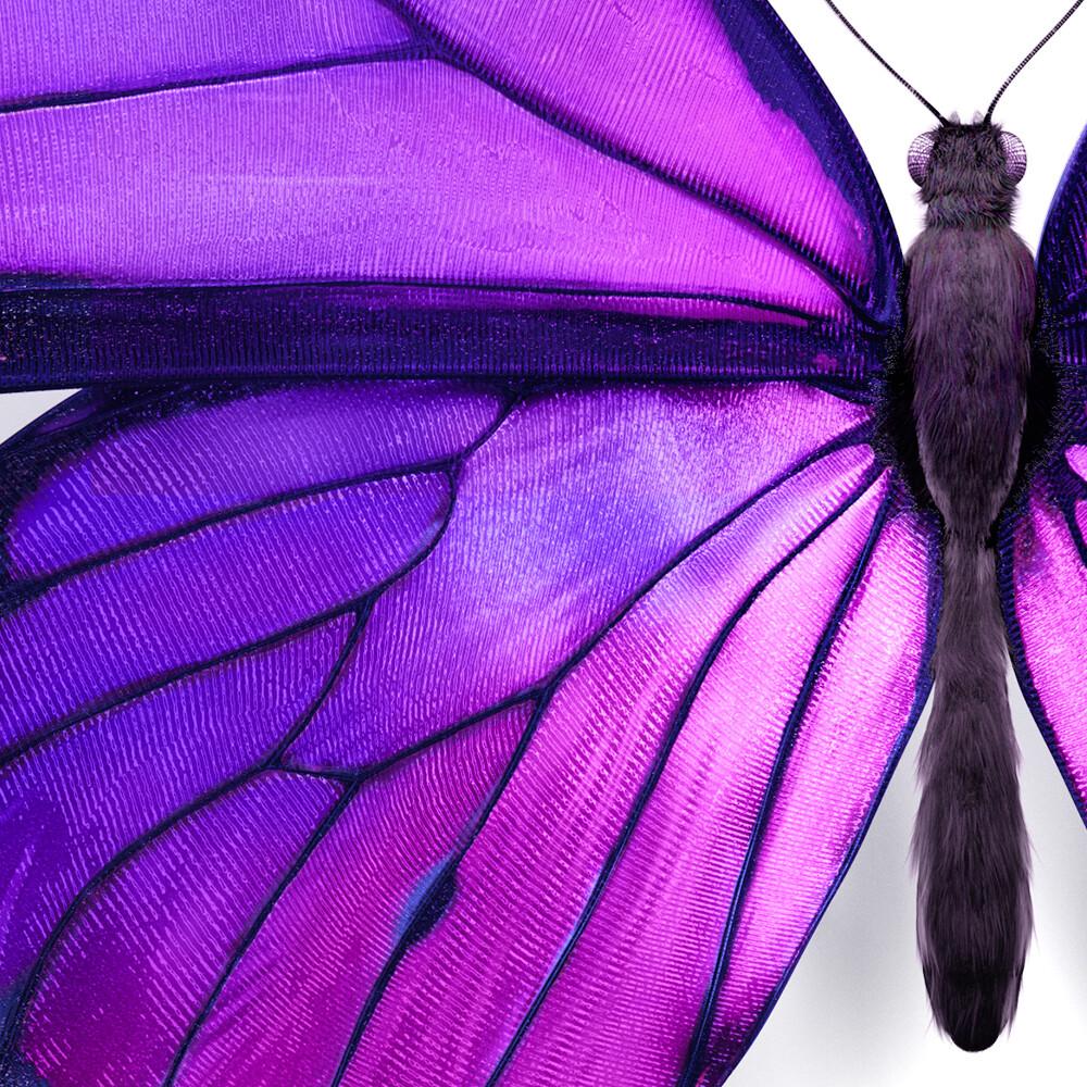 Telus Canada - Butterfly