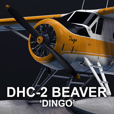 "A DHC-2 Beaver Seaplane Named ""Dingo"""