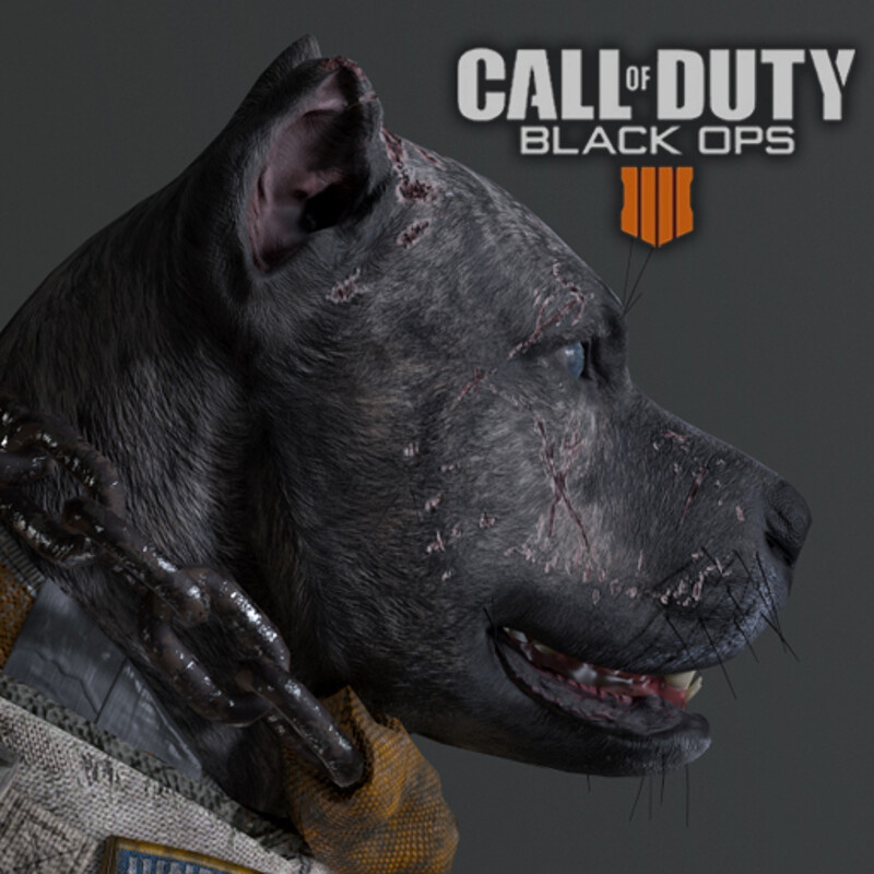 Juneau - Call of Duty: Black Ops 4