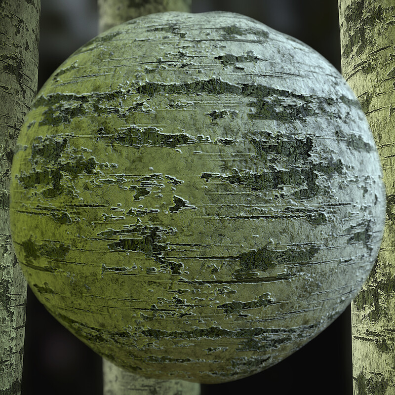 Birch Bark Substance