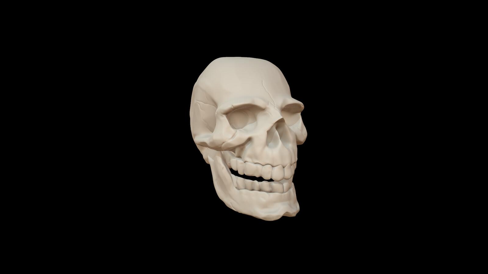 Skull Sculpt