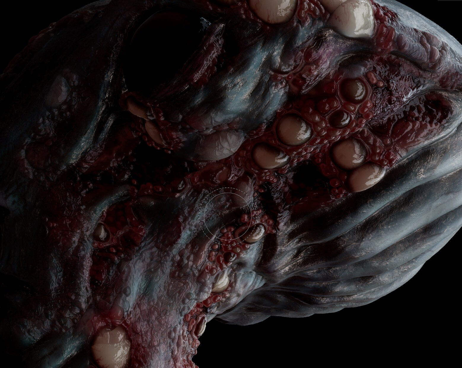 Skin Disfunction - Final procedural Material