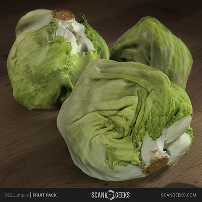 Scan geeks 022 lettuce presentation square